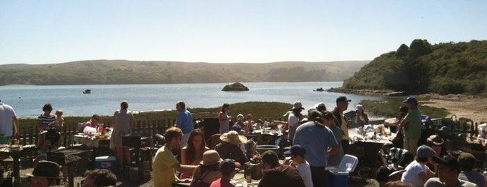 Hog Island Oyster Farm is one of SF.