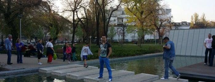 II. János Pál pápa tér (28, 28A, 37, 37A, 62) is one of Pesti villamosmegállók.