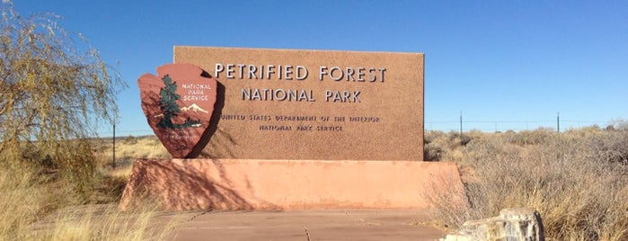 Petrified Forest National Park is one of National Parks.