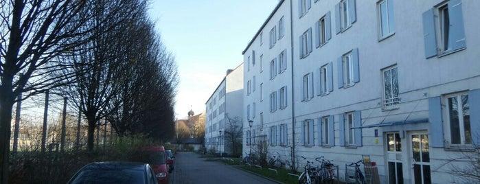 H Ostfriedhof is one of München Tramlinie 17.