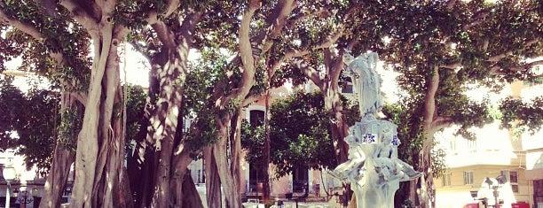 Plaza de Gabriel Miró is one of Alicante urban treasures.