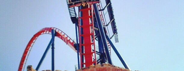 SheiKra is one of Florida Rides 2012.