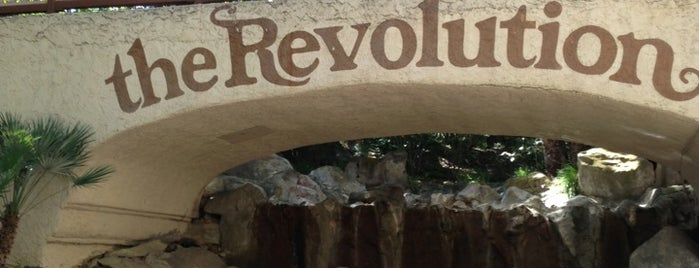 Revolution is one of ROLLER COASTERS.