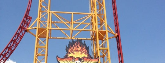 Dare Devil Dive is one of ROLLER COASTERS.