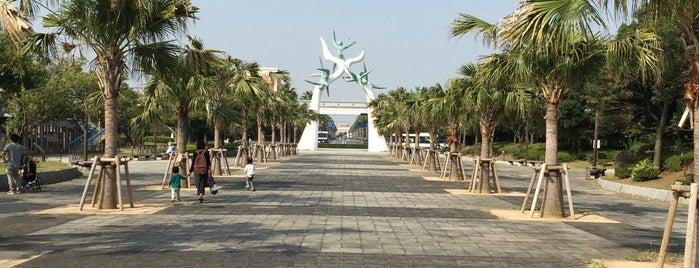 浦安市運動公園 is one of 新浦安周辺の公園.
