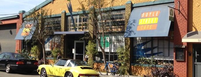 Indian Food University Ave Berkeley