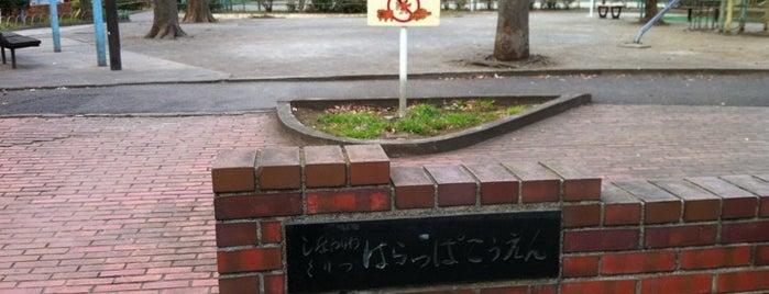 品川区立 原っぱ公園 is one of 公園.