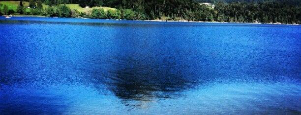 Fuschlsee is one of das schwimmwasser.