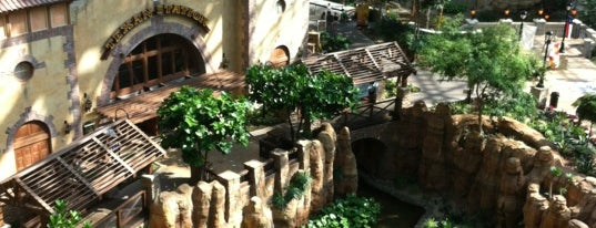 Gaylord Texan Resort & Convention Center is one of Hotel / Casino.