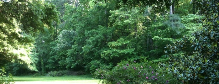 Forest Hills Park is one of Must-visit Great Outdoors in Durham.
