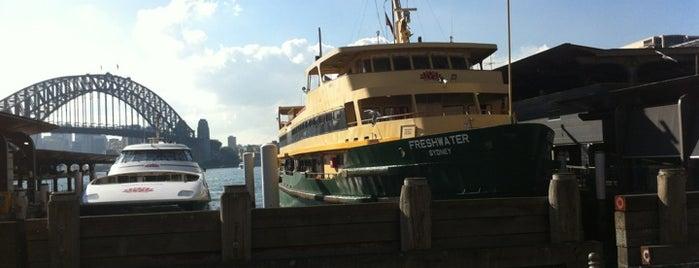 MV Freshwater is one of Essential Sydney.