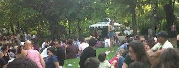 Jardim da Estrela is one of Dog people.
