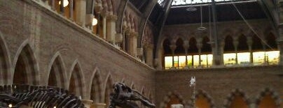 Oxford University Museum of Natural History is one of My United Kingdom Trip'09.