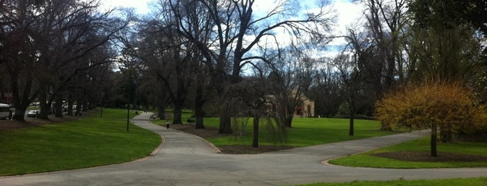 Treasury Gardens is one of Quintessential Melbourne.