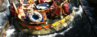 Kali River Rapids is one of All-time favorites in United States.