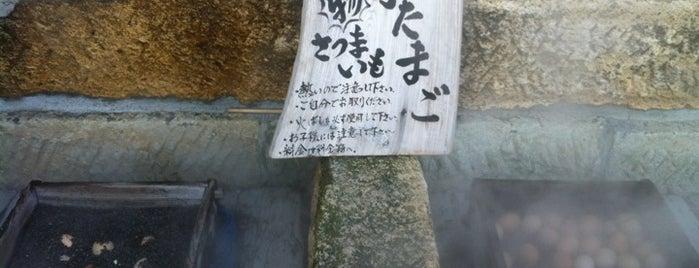 山川砂むし温泉 砂湯里 is one of 温泉.