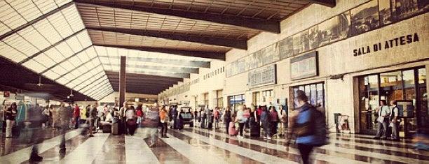 Firenze Santa Maria Novella Railway Station (ZMS) is one of Firenze (Florence).