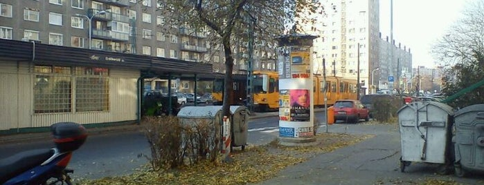 Újpalota, Erdőkerülő utca (69) is one of Pesti villamosmegállók.