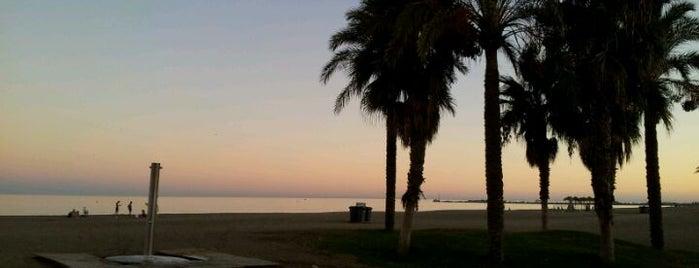 Paseo Marítimo Antonio Banderas is one of 101 cosas que ver en Málaga antes de morir.
