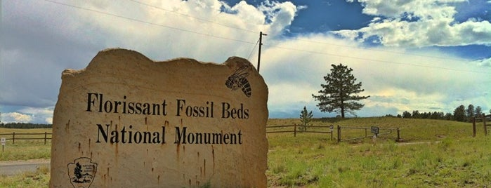 Florissant Fossil Beds National Monument is one of Colorado Tourism.