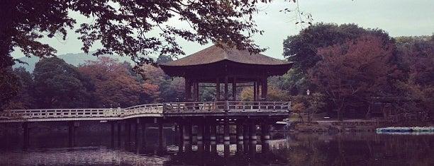 浮見堂 is one of Great outdoor in NARA.