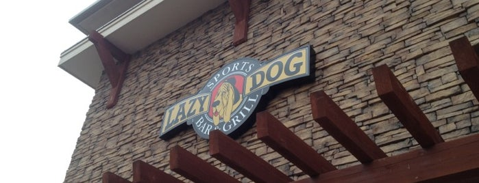 Lazy Dog Sports Bar & Grill is one of Best Bars in Colorado to watch NFL SUNDAY TICKET™.