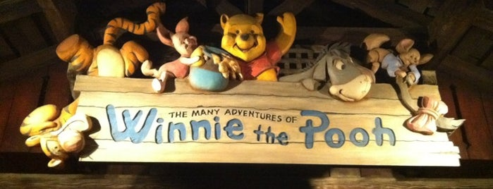 The Many Adventures of Winnie the Pooh is one of Disneyland Fun!!!.