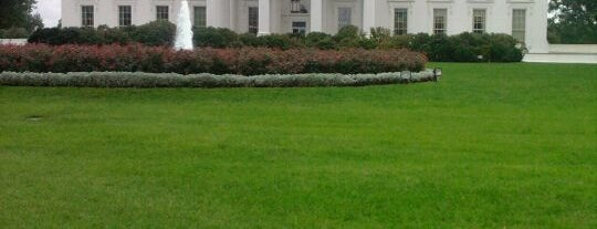 The White House is one of Must see in Washington DC.