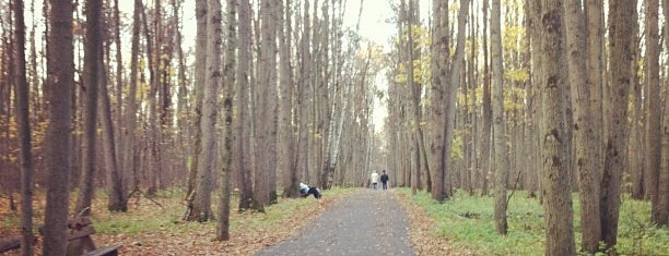 Битцевский лесопарк is one of Лучшие парки Мск.