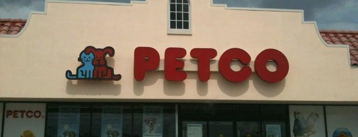 Petco is one of Lakeland.