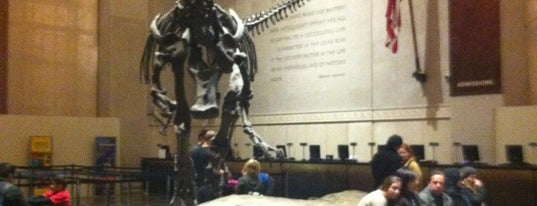 American Museum of Natural History is one of NYC to do.