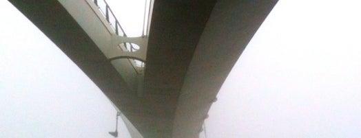 Nesciobrug (Brug 2013) is one of Bridges in the Netherlands.