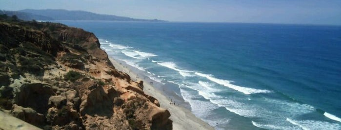 Torrey Pines State Natural Reserve is one of Keeping It Local:  10 Must See Places in SD.