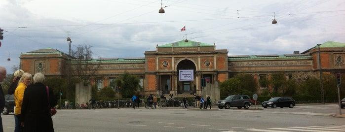 rød moden geologisk museum København