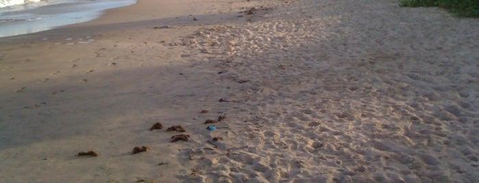 Praia de Tamandaré is one of Turistando em Pernambuco/Tourism in Pernambuco.