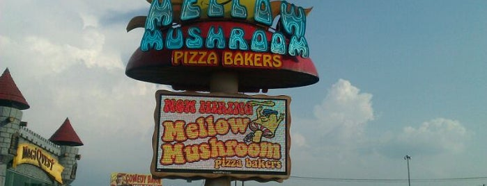 Mellow Mushroom Pizza Bakers is one of Top dinner spots in Pigeon Forge, TN.