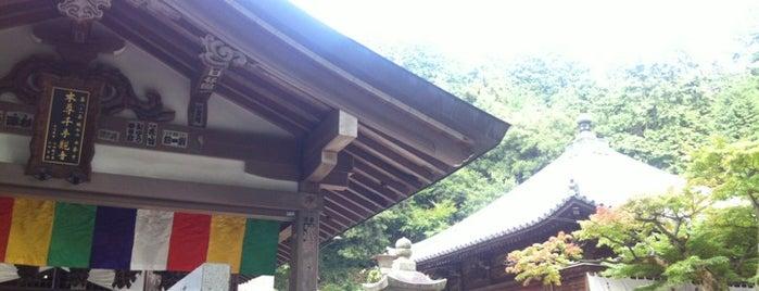Shiromine-ji is one of 四国八十八ヶ所霊場 88 temples in Shikoku.