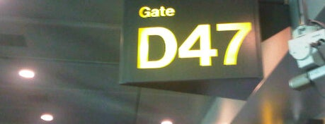 Gate D47 is one of SIN Airport Gates.
