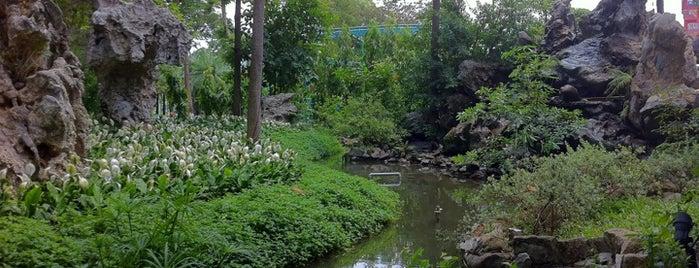 Cà phê Vườn Đá - Stone Garden is one of Huế.