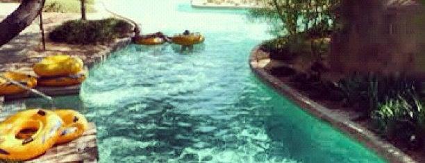 The Westin Kierland Resort & Spa is one of USA 2012.