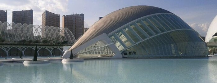 Top 10 favorites places in Valencia, España