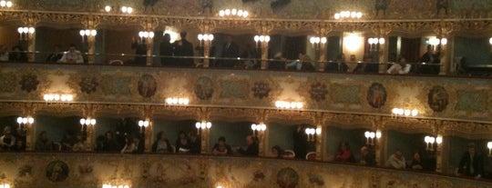 Teatro La Fenice is one of Venezia.