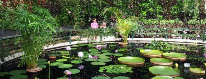 Royal Botanic Gardens is one of Must-visit Great Outdoors in London.