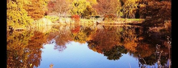 Arnold Arboretum is one of BUcket List.