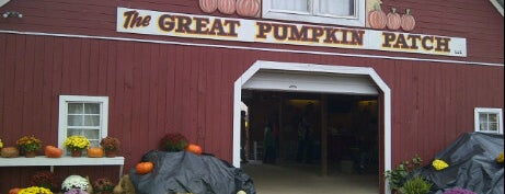 The Great Pumpkin Patch is one of Top 10 places to try this season.