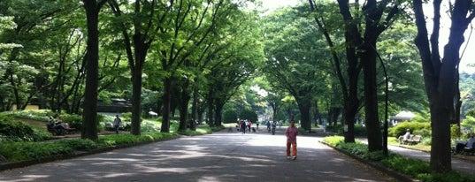 駒沢オリンピック公園 ジョギングコース is one of Park.