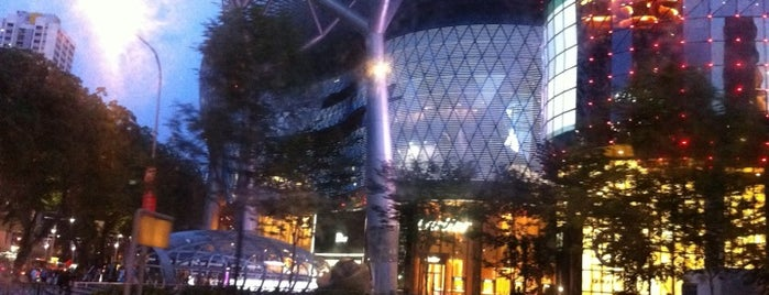 ION Orchard is one of Retail Therapy Prescriptions.