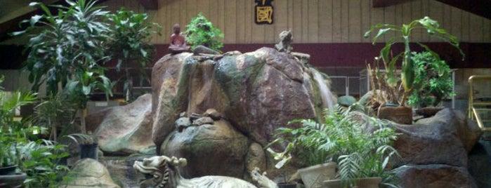 Golden China Restaurant is one of Must-visit Nightlife Spots in Ventura.
