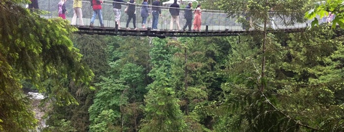 Capilano Suspension Bridge is one of Canada Favorites.