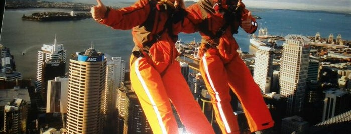 SkyWalk is one of Fun Group Activites around New Zealand.